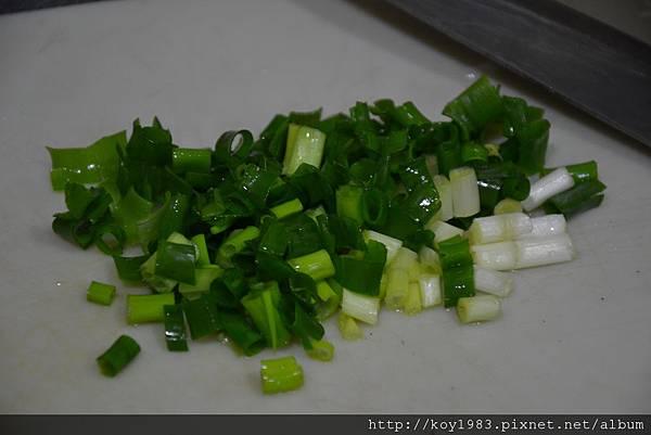 12-10-07青蔥鮪魚洋蔥沙拉 008