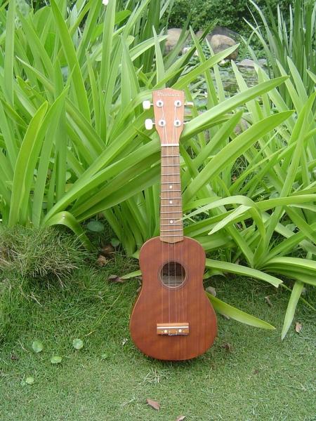 koyama ukulele 小山烏克麗麗-14364.JPG