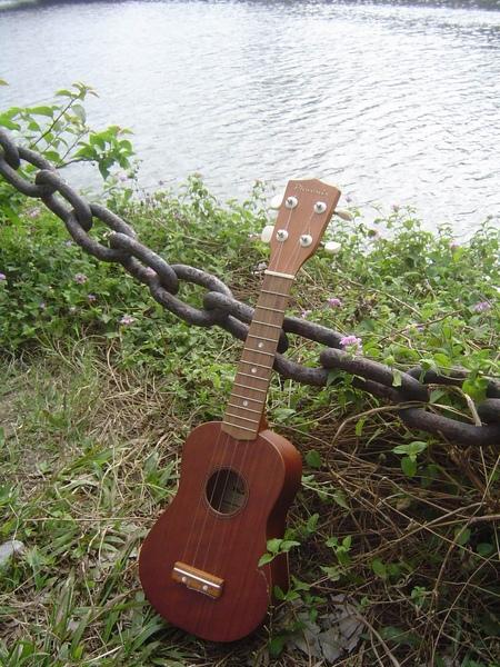koyama ukulele 小山烏克麗麗