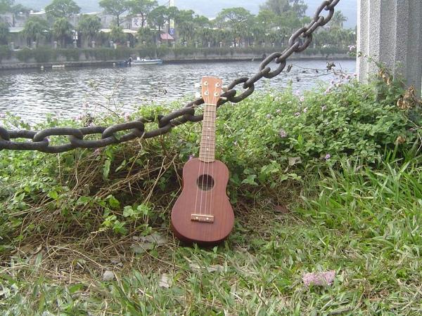 koyama ukulele 小山烏克麗麗-14389.JPG