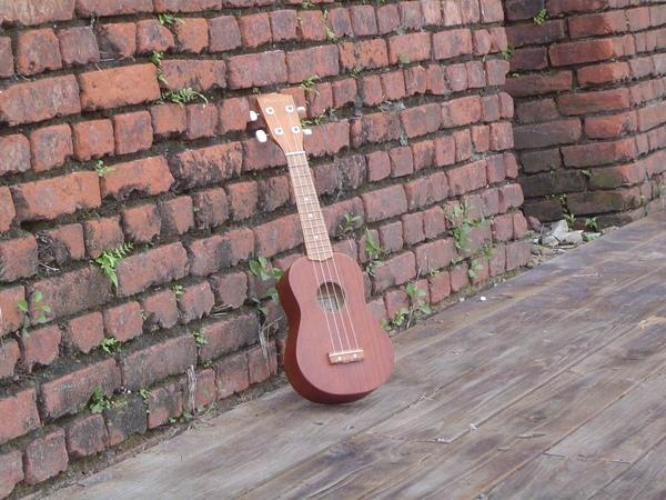 koyama ukulele 小山烏克麗麗-14417.JPG