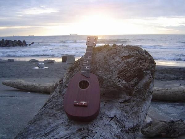 koyama ukulele 小山烏克麗麗-14422.JPG