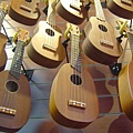 koyama ukulele 小山烏克麗麗-1.JPG