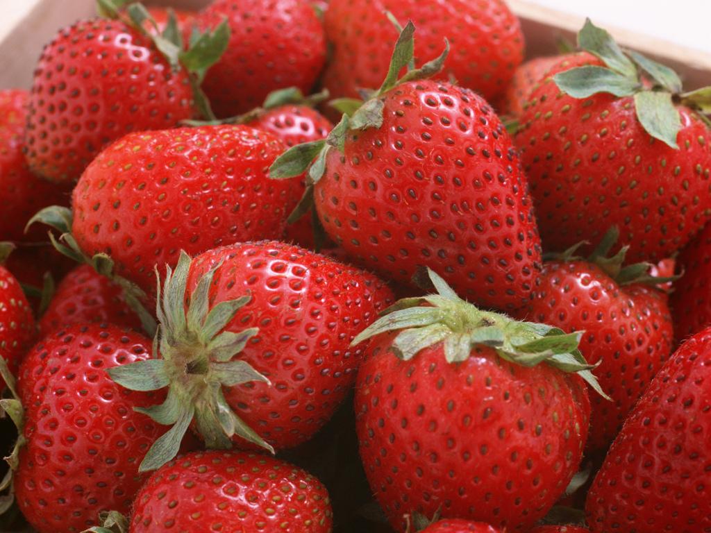 fruit_strawberry_wallpaper_AP17161.JPG