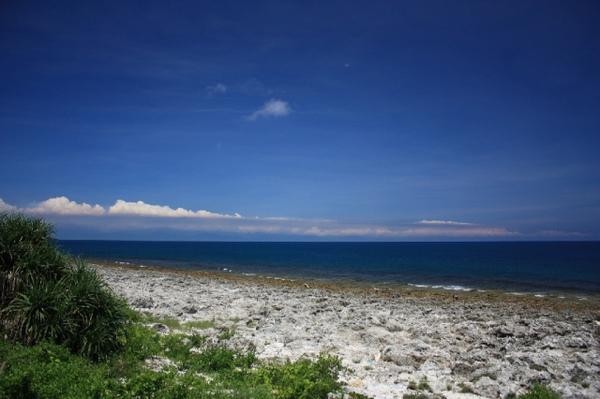 厚石裙礁 1.jpg