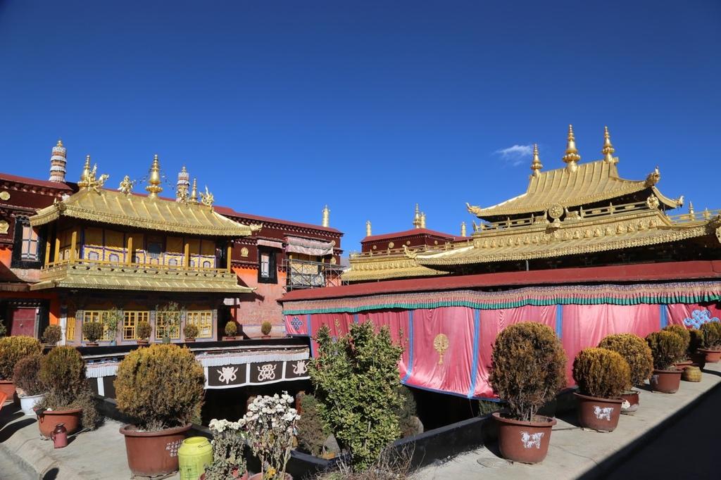 西藏拉萨_西藏拉萨人口
