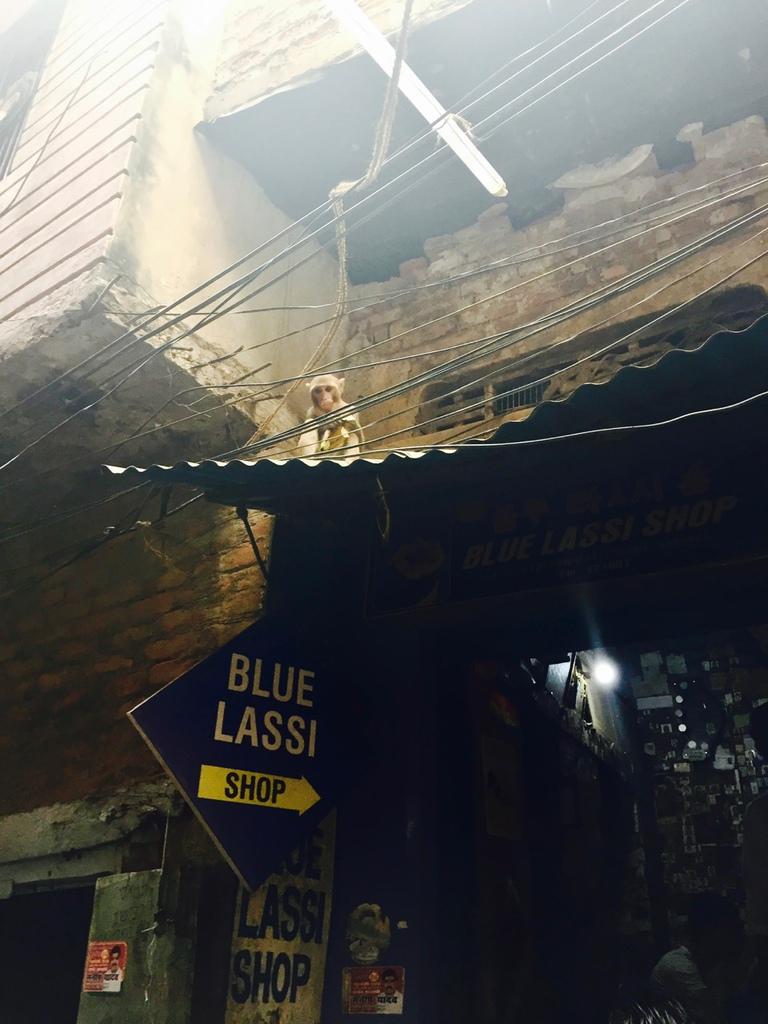 blue lassi