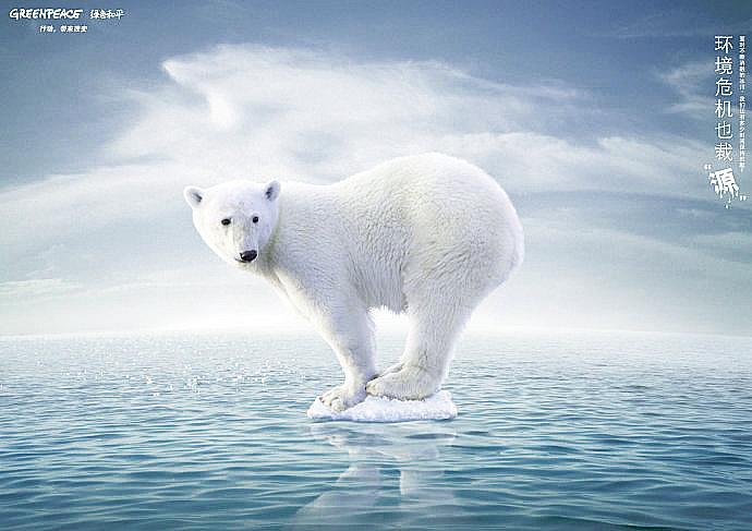 保護北極熊 你可以這麼做!