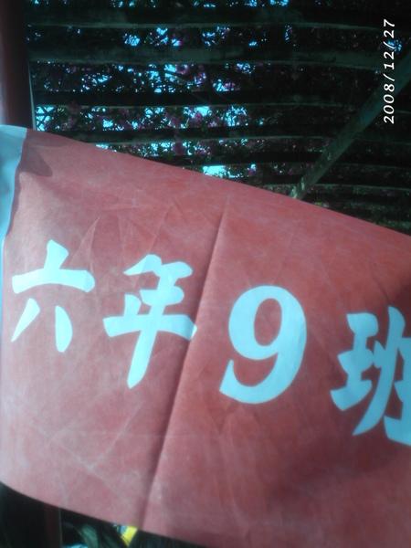 FILE0116.JPG