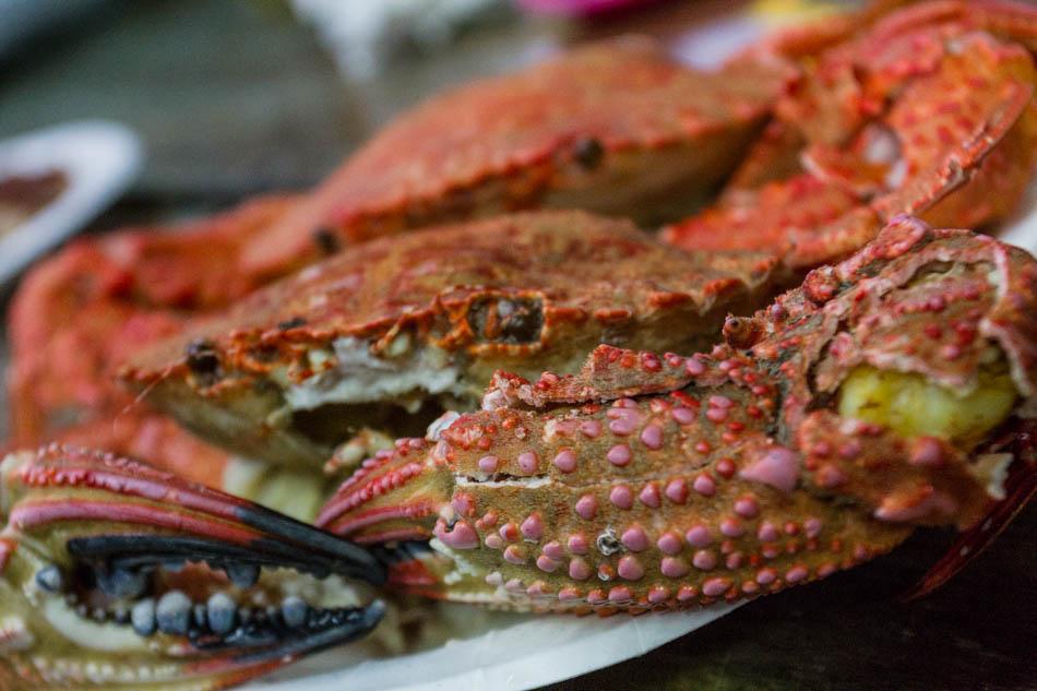 台中美食-第一猛烤鮮蚵