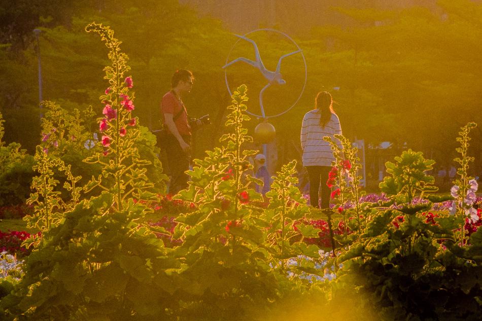 凹子底森林公園