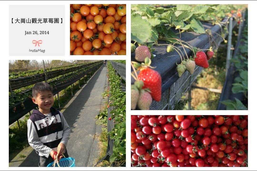 大崗山觀光果園