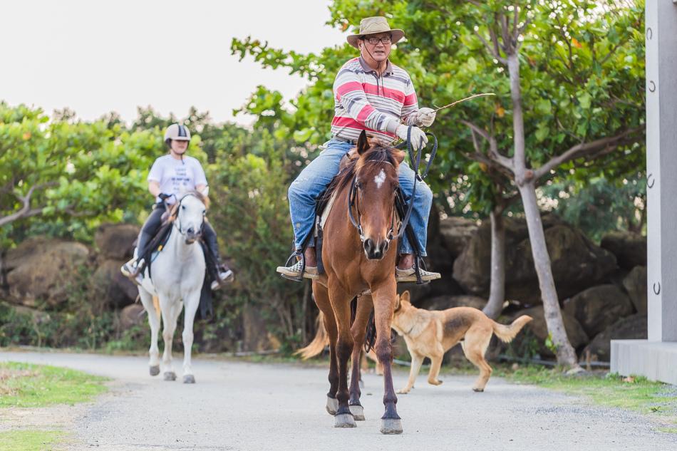 屏東旅遊 - 悠客馬術渡假村