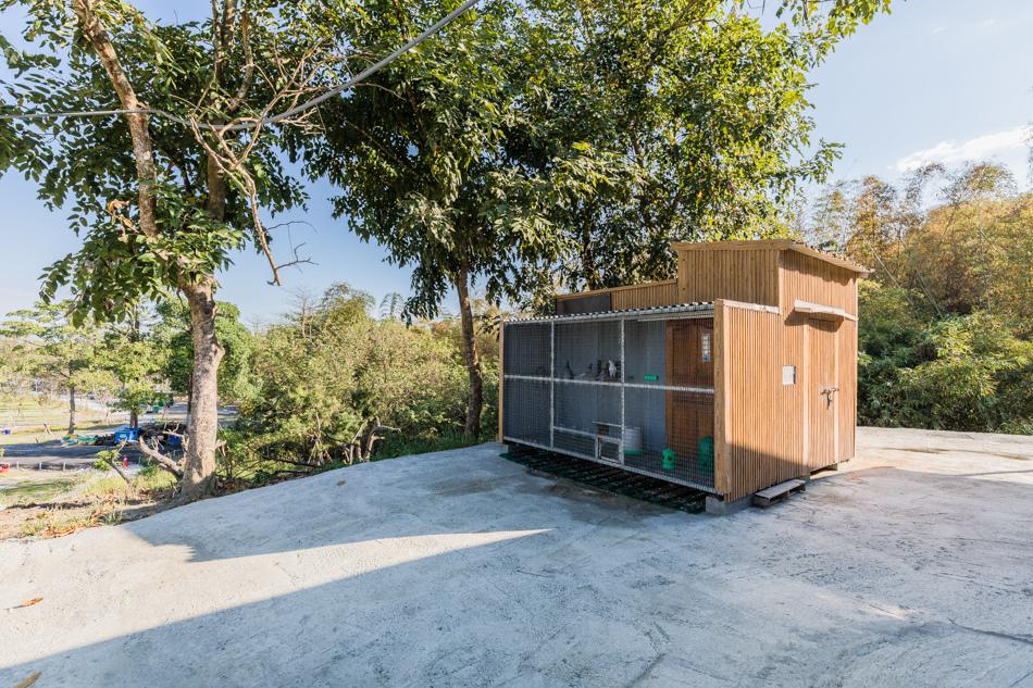 鹿兒島生態露營區175A8477.jpg