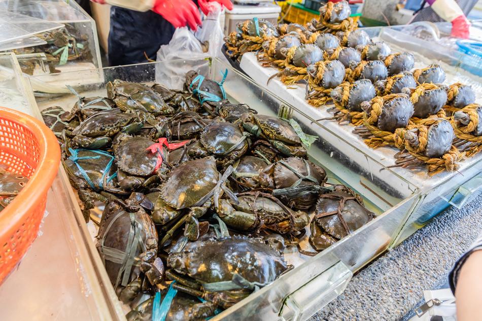 蚵仔寮魚貨直銷中心175A6399.jpg