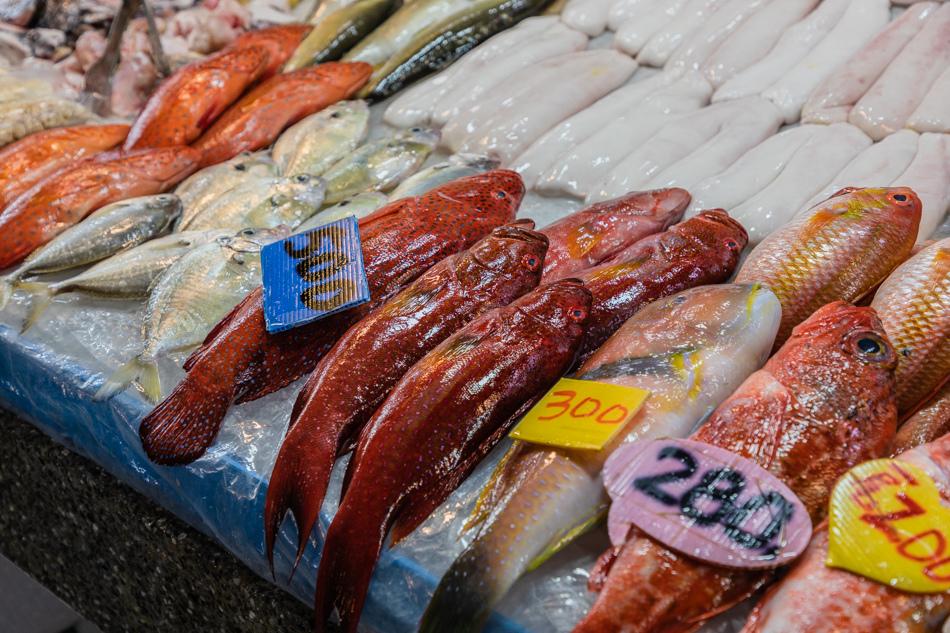 蚵仔寮魚貨直銷中心175A6403.jpg