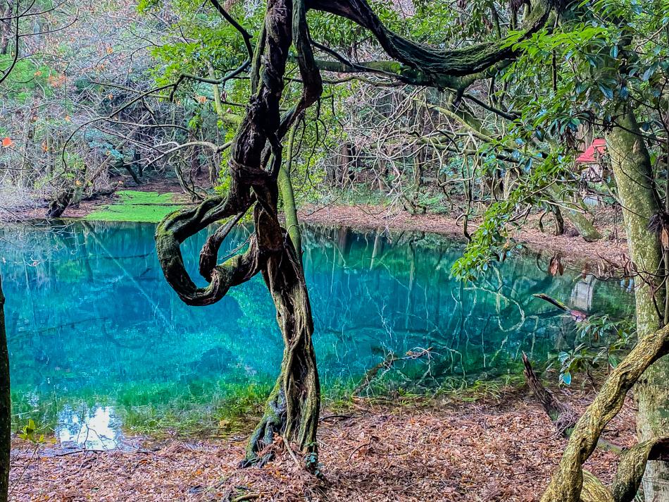 牛渡川、丸池様