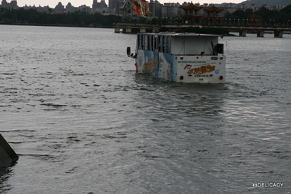 高雄鴨子船-緩緩駛進水中