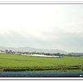 SUN_0013.jpg