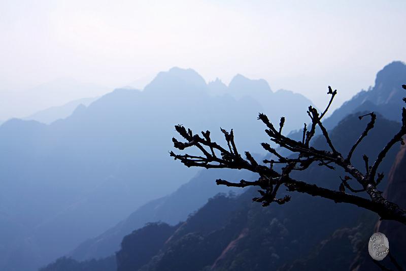 黃山 via Kate's FZ