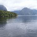 PICT1981-Tranquility at Doubtful Sound.JPG