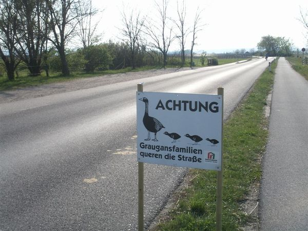 20080414-039 Interesting road sign in Neusiedler see NP (Illmitz, Niederosterreich)-PICT2858.JPG
