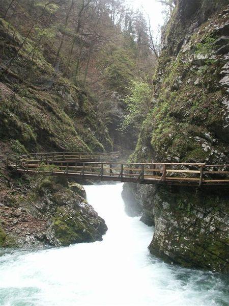 20080423-066 Vintgar gorge(Bled)-PICT3267.JPG