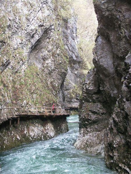 20080423-071 Vintgar gorge(Bled)-PICT3272.JPG