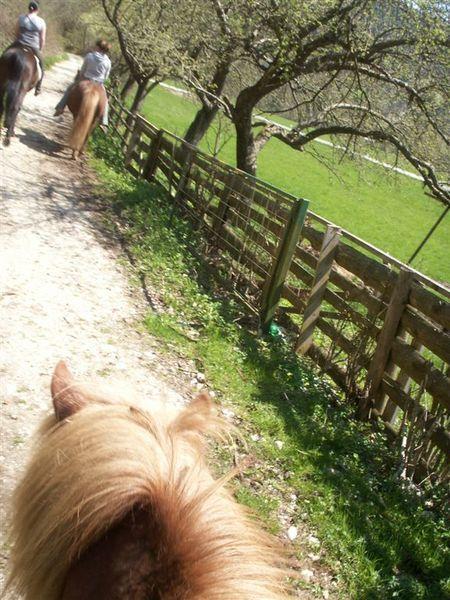 20080427-087 Horse riding from Mrcino Ranc in Studor(Bohinj)-PICT3665.JPG