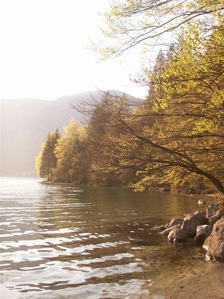 20080427-167 Sunset views from E shore of Bohinj Jezero(Bohinj)-PICT3755.JPG