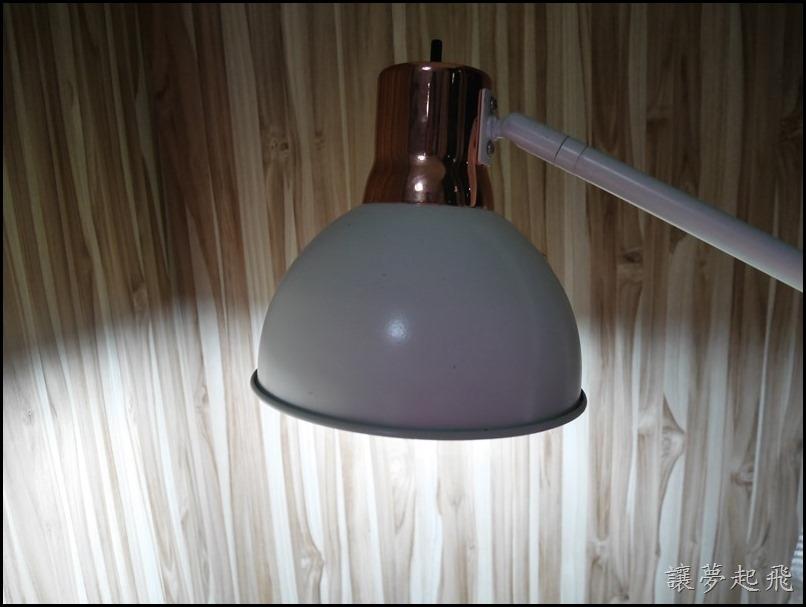 億光 LED 12W07