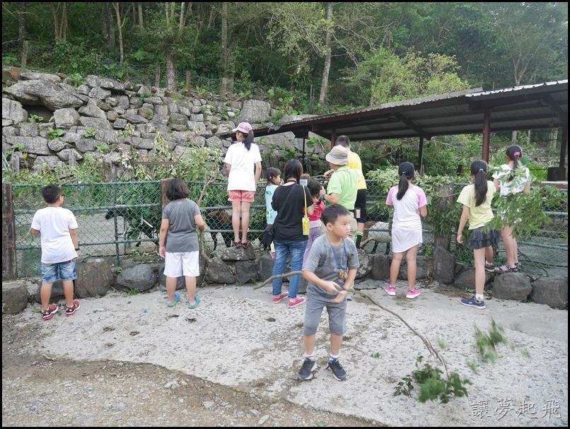 頭城農場夏令營448