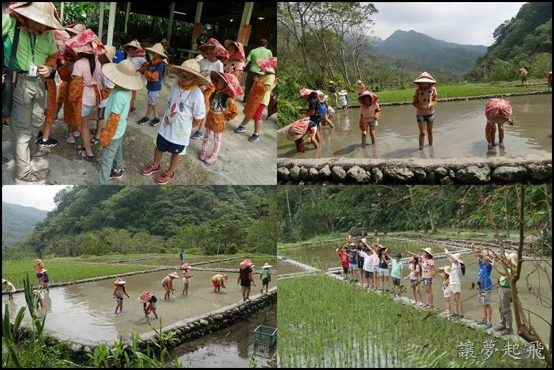 頭城農場夏令營 10