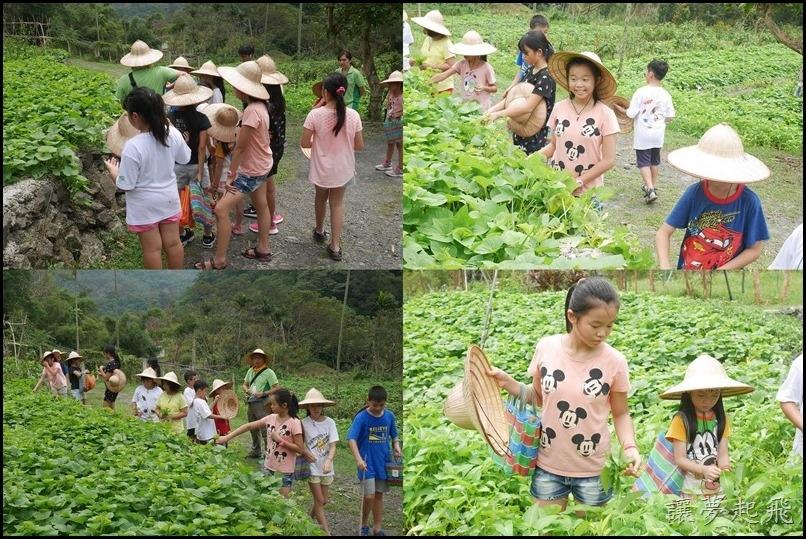 頭城農場夏令營 3