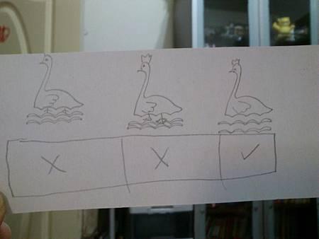昕昕的三隻天鵝.jpg