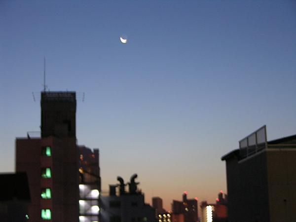 宿舍後的夜景.jpg