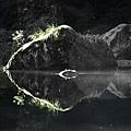 杉林溪22