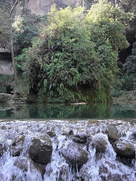 杉林溪24