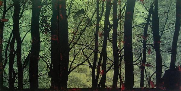 森林的秘密02
