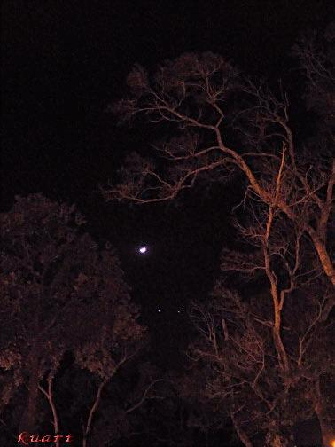 雙星拱月-8.jpg