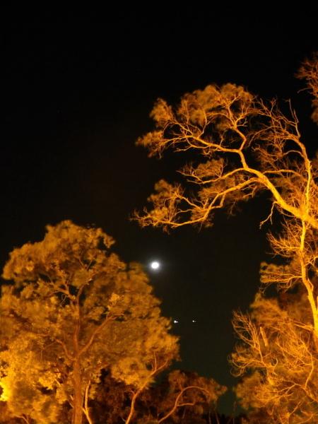 雙星拱月-9.jpg