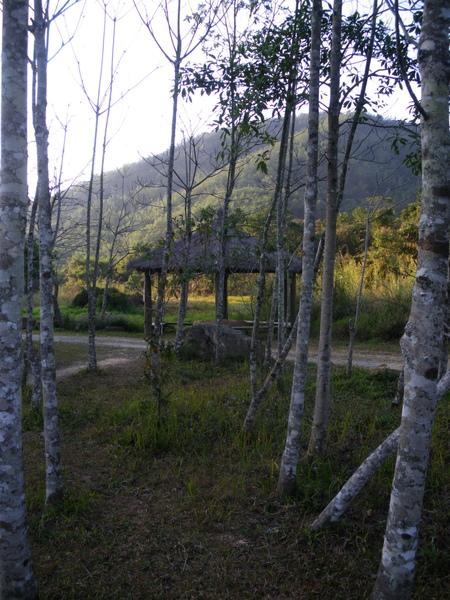 挑米村草南濕地