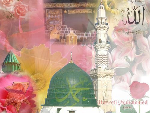 http://www.loadtr.com/290476-HZ_MUHAMMED.htm