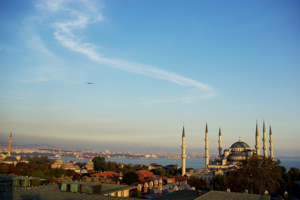 Blue Mosque-2 by Moses