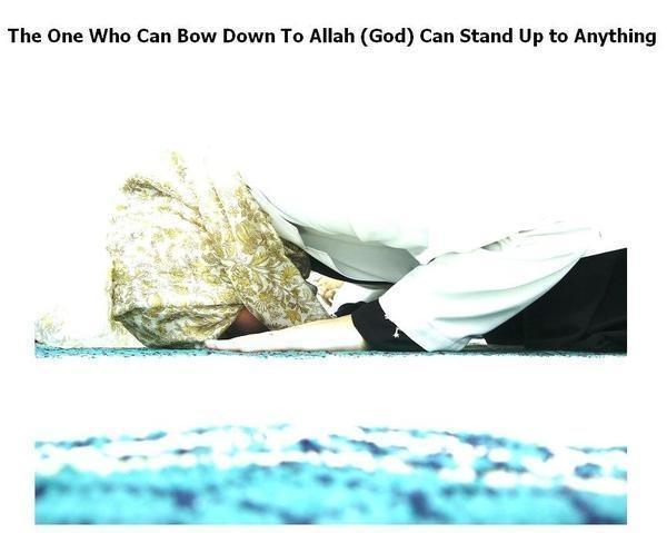 http://s257.photobucket.com/albums/hh206/3asfuura/Islamic%20Pics/?action=view&current=l_67df284699246f932a5f90eddb9783-1.jpg