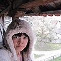 9.我在羅騰堡老城牆.jpg