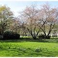 6.飲泉廳前的花園.jpg