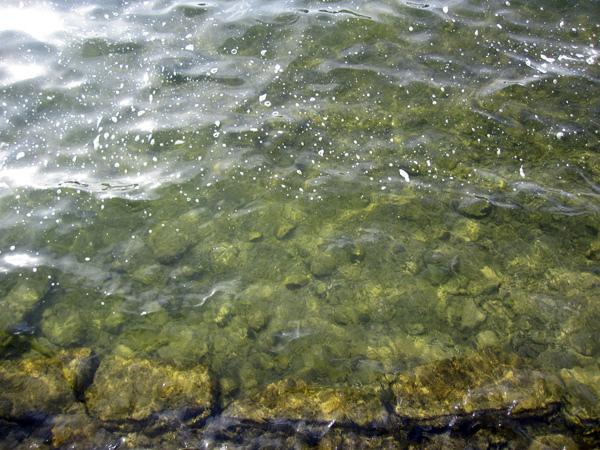 10.水質清澈.jpg