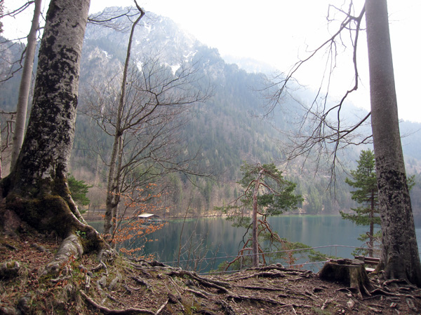 14.阿爾卑斯湖.jpg