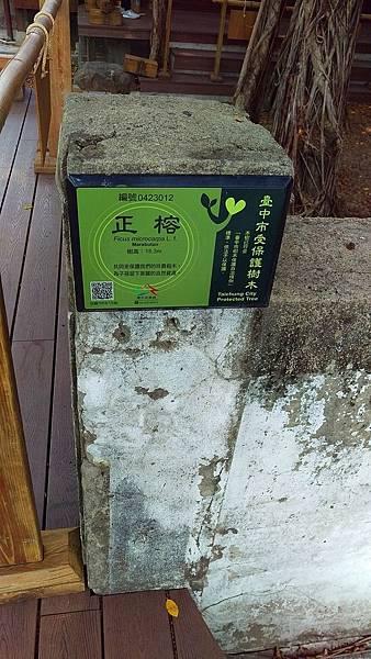 台中文學公園_老樹保護說明.jpg
